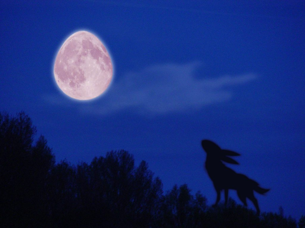 EASTER BUNNY HOWLING MOONLIGHT