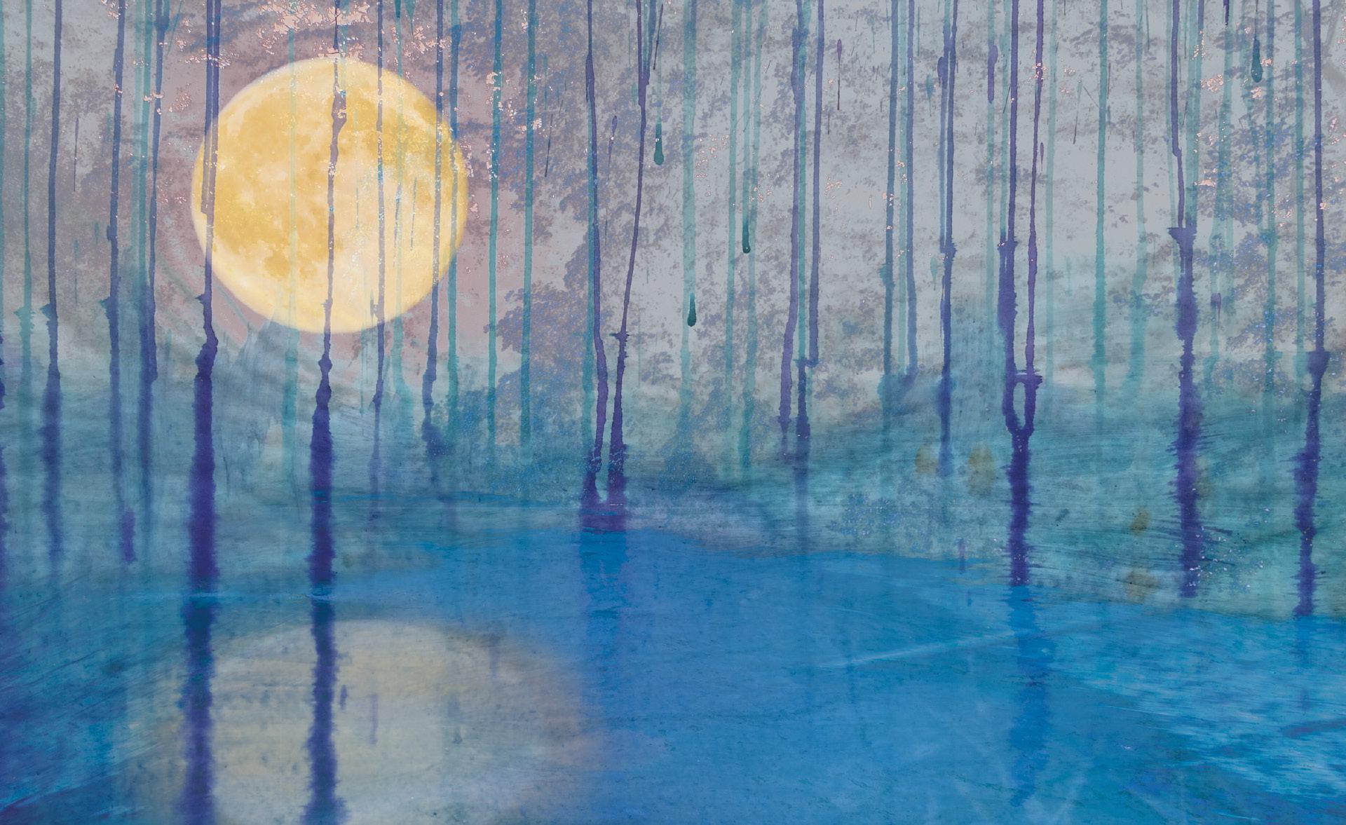 Winter dahinter  |  Winter background  |  Detrás del invierno
